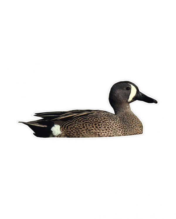 """Duck Magnet or Sticker for Indoor or Outdoor Use 8"""" x 3.5"""""""