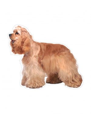 """Cocker Spaniel Magnet or Sticker for Indoor or Outdoor Use 6"""" x 5"""""""