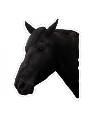 Black Horse Head Magnet