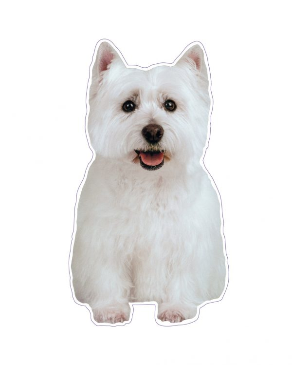 """Westie Magnet or Sticker for Indoor or Outdoor Use 4"""" x 7"""""""