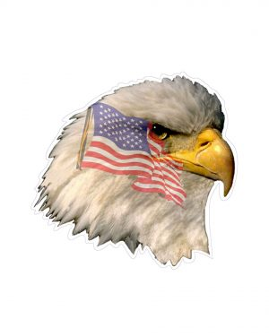"Eagle Head with Flag Magnet or Sticker for Indoor or Outdoor Use 5"" x 5"""