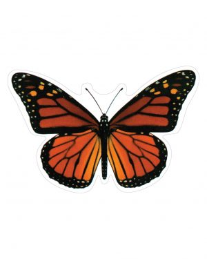 Monarch Butterfly Magnet or Sticker for Indoor or Outdoor Use 6.5 x 4""