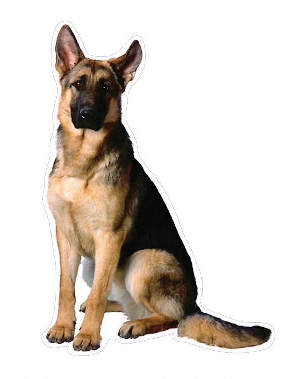 """German Shepherd Magnet or Sticker for Indoor or Outdoor Use 7"""" x 4.6"""""""