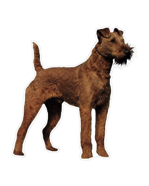 """Terrier Magnet or Sticker for Indoor or Outdoor Use 6"""" x 6"""""""