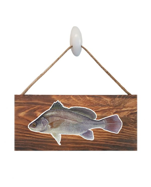 """Good Vibes™ Freshwater Drum Dark Wood Sign. Size: 12"""" W x 5.5"""" H - With Rope 11"""" H -.30 Thick"""