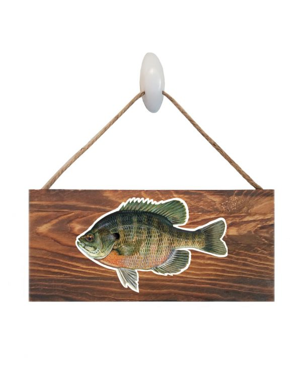 "Bluegill Dark Wood Sign. Size: 12"" W x 5.5"" H - With Rope 11"" H -.30 Thick"