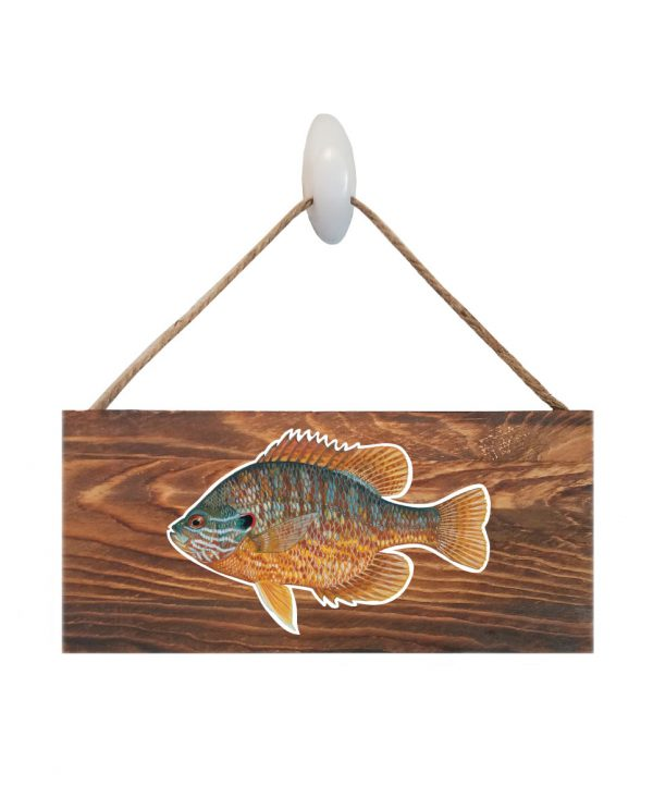 """Pumpkinseed Dark Wood Sign. Size: 12"""" W x 5.5"""" H - With Rope 11"""" H -.30 Thick"""