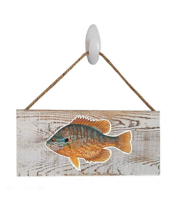 """Pumpkinseed White Wood Sign. Size: 12"""" W x 5.5"""" H - With Rope 11"""" H -.30 Thick"""