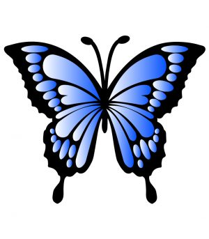 Blue Gradient Butterfly