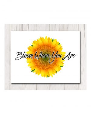 Sunflower Bloom Canvas in 4 sizes
