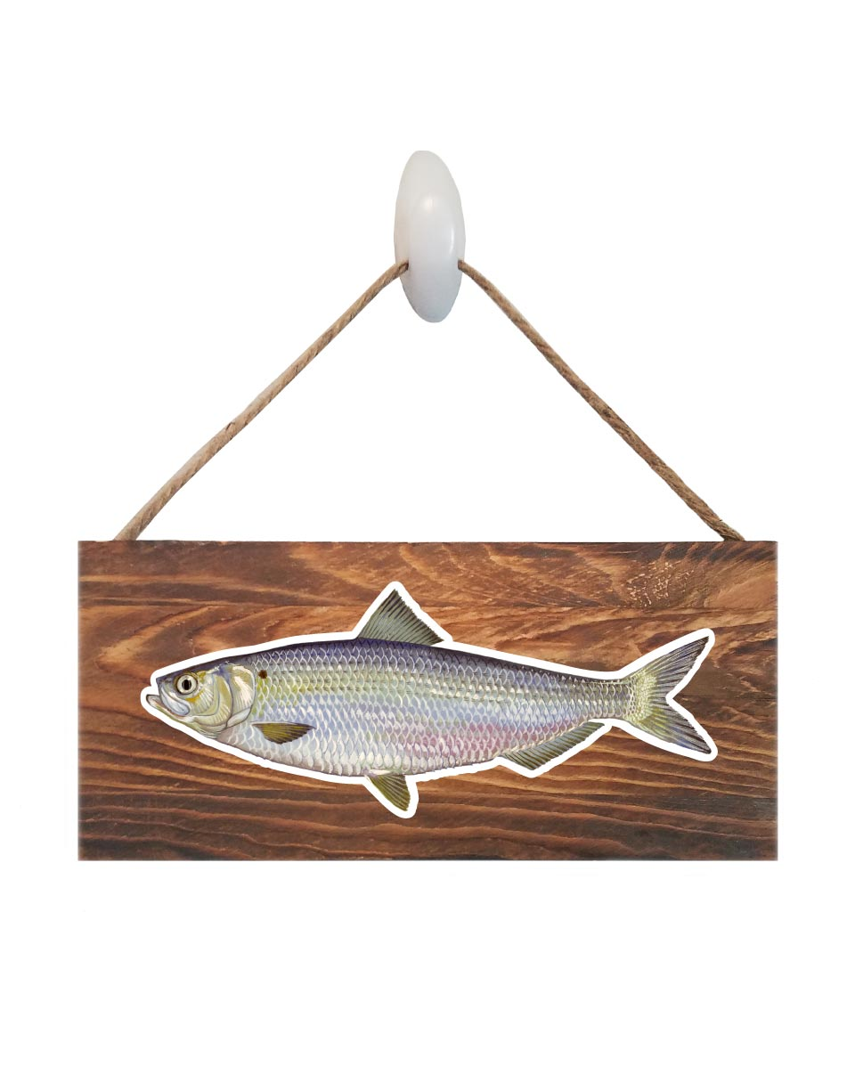 Blue Back Herring Sign